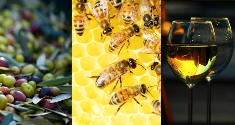 tenute rossini miele vino olio